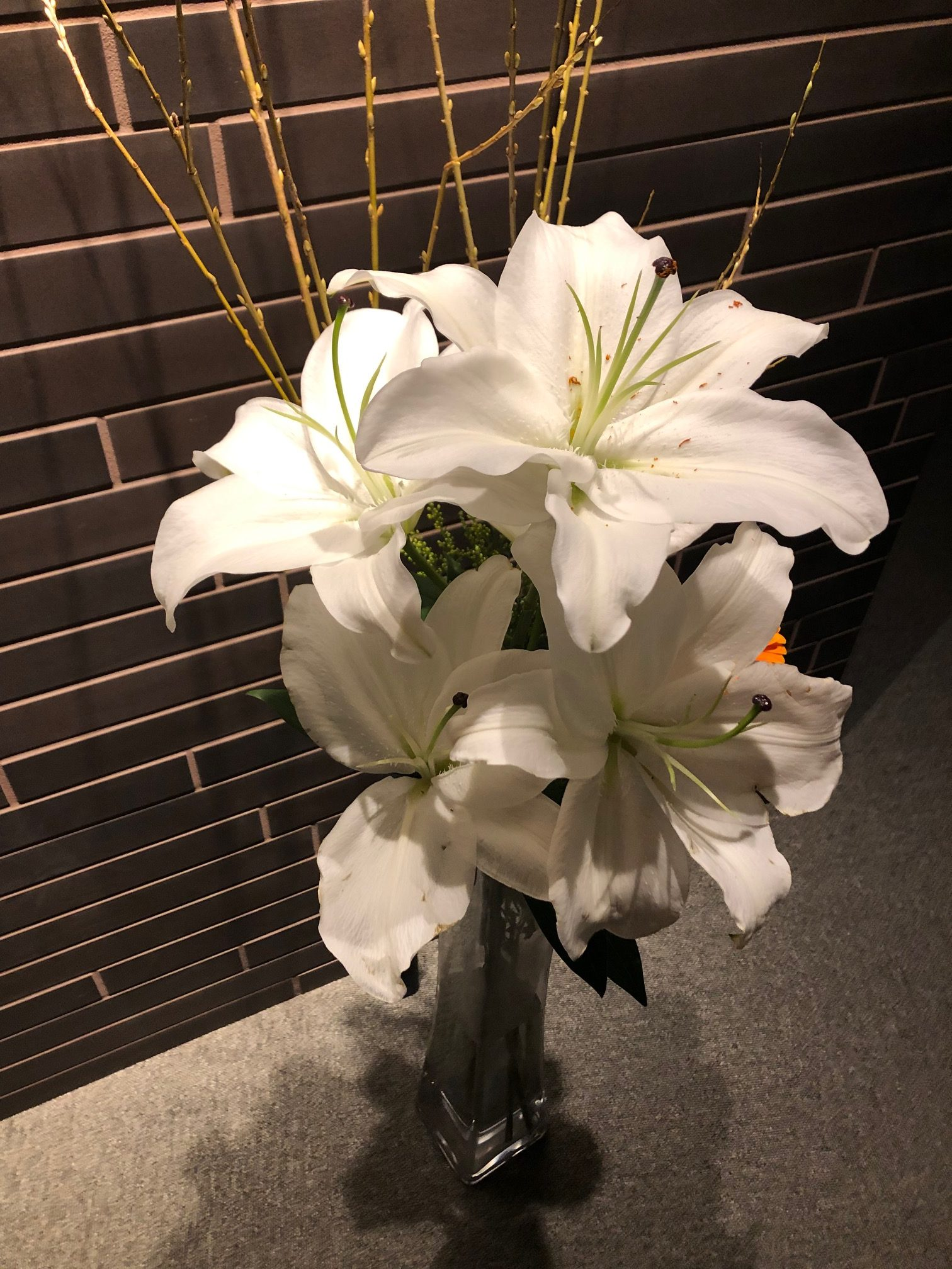 flower_201116